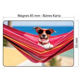 Magnesy na lodówkę - Wizytówki magnetyczne