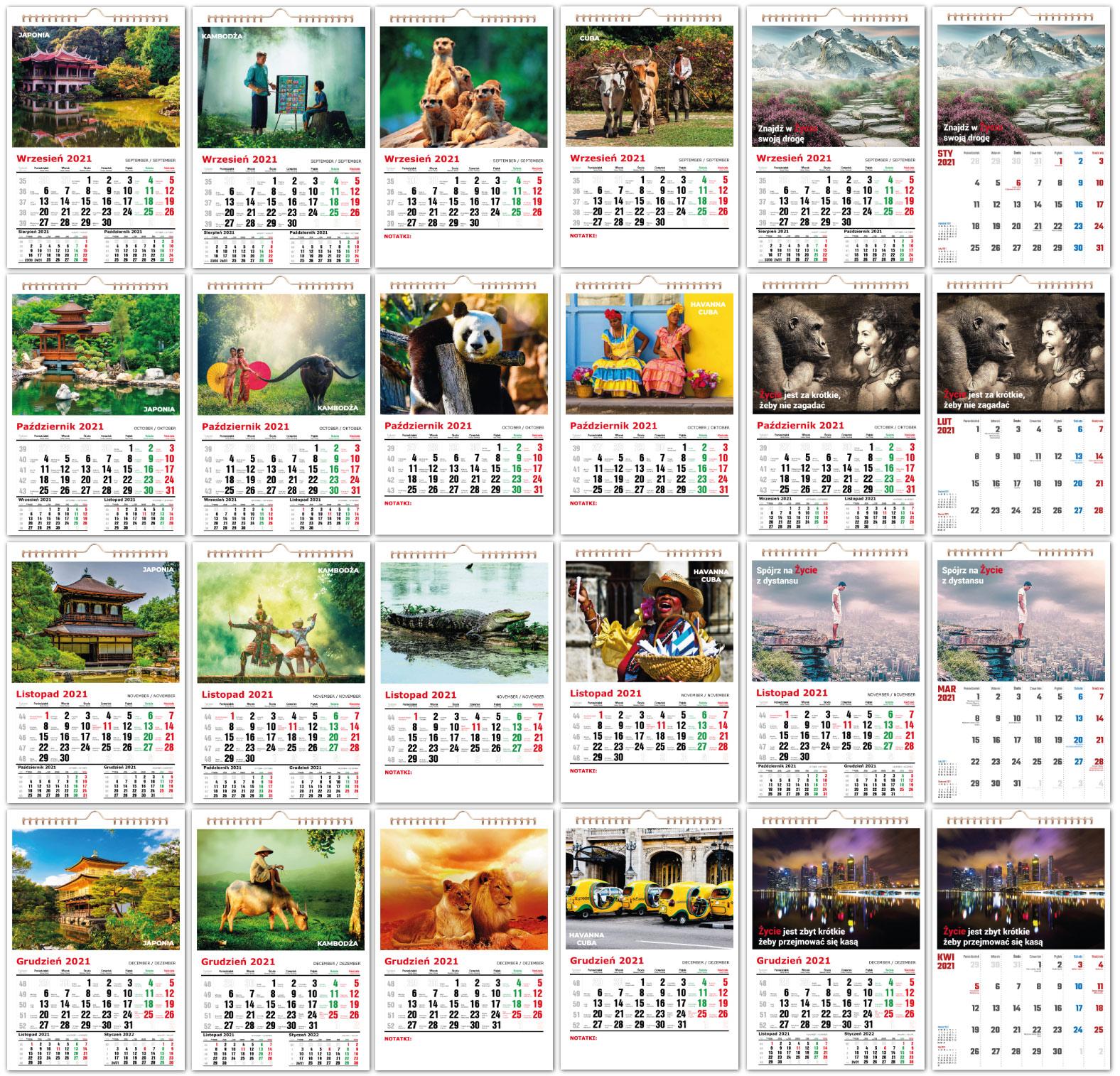Fotokalendarze scienne